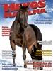 hevosmaailma-1-2013.jpg