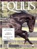 Equus kansi